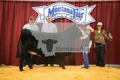 2019 Montana Fair