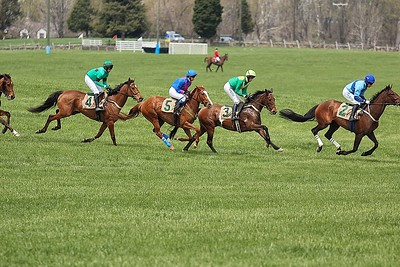 Middleburg Spring Races 2014