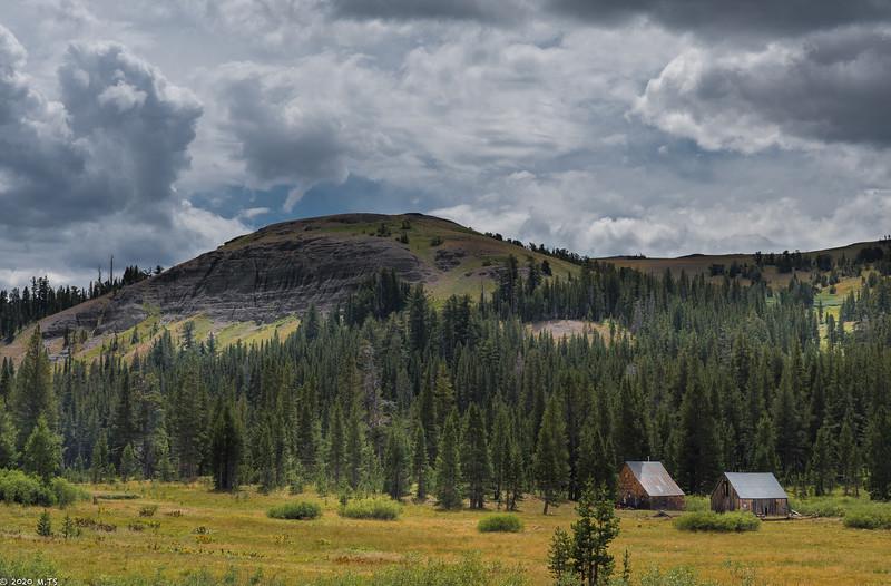Meiss Meadow
