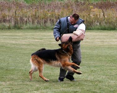 2008 NC Regional Schutzhund Championship 10/4/08
