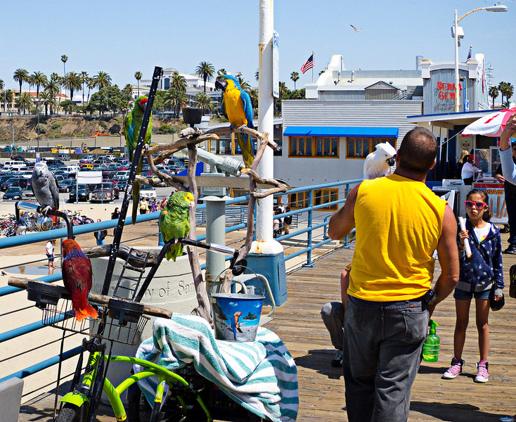 Santa Monica pier 01.jpg