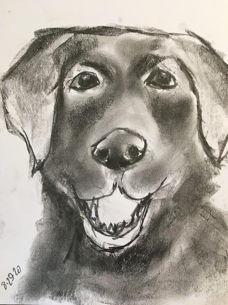 8/29 quick graphite sketch