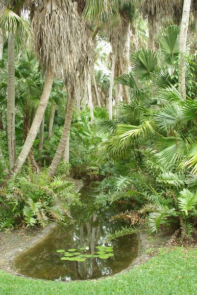 McKee Botanical Garden043.JPG