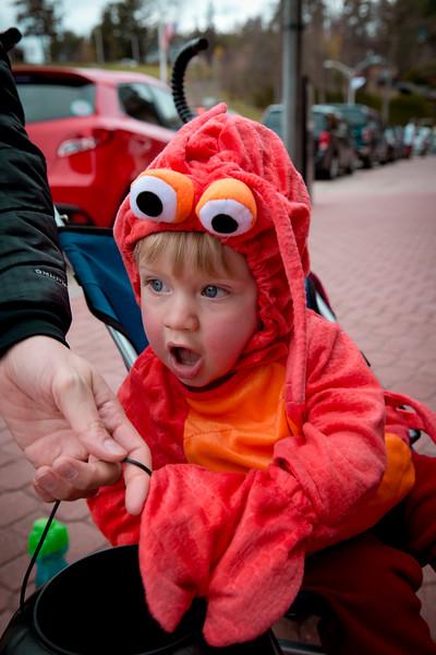 Wyatt's First Halloween 328.jpg