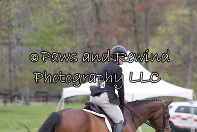 ALL 3' HUNTER (LOW/USHJA/SARATOGA)