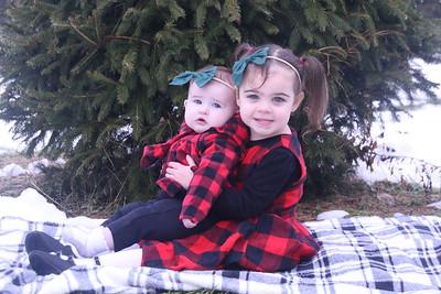 12-2-18 Avery Christmas Tree Mini