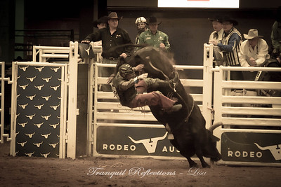 Rodeo 2018
