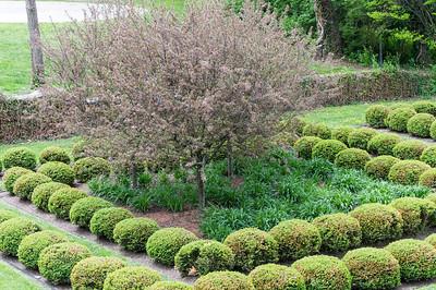 Fleischman Garden