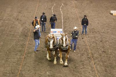 Heavy Horse Pulls 2015