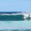Surfin north shore