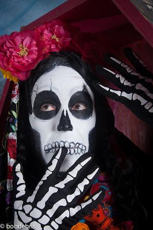 roberts birdlady/day of dead 2017