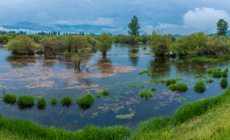 Kootney River Over It's Banks