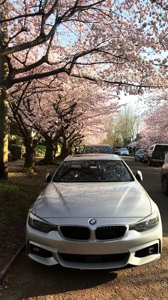 BMW 440xi Gran Coupe