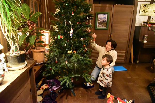 TREE DETRIMMING - 3 January, 2020 (20)