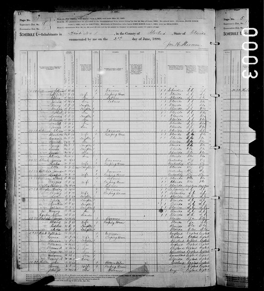 1880 census Birt family in Alachua co Fl.jpg