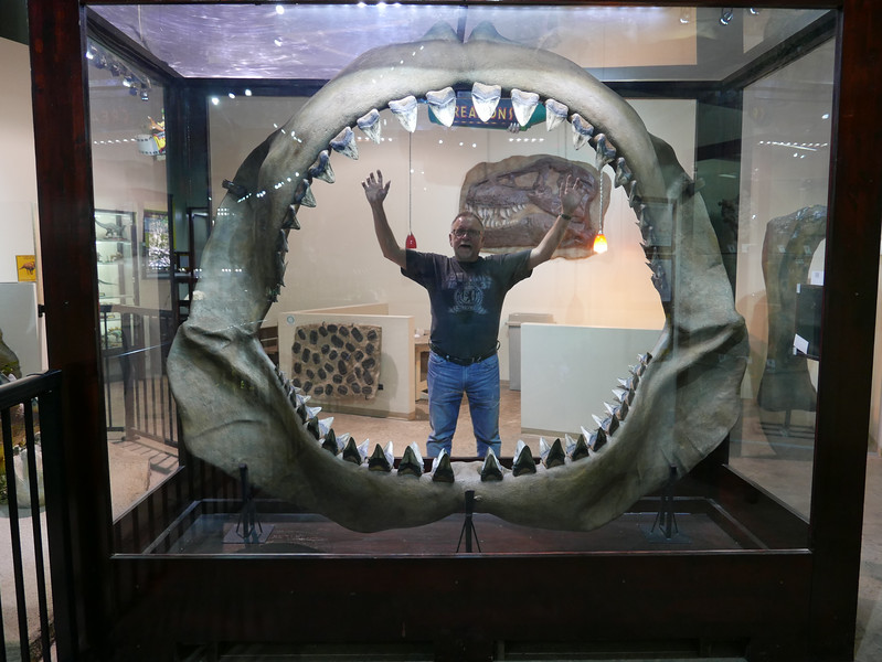 At Fossil World