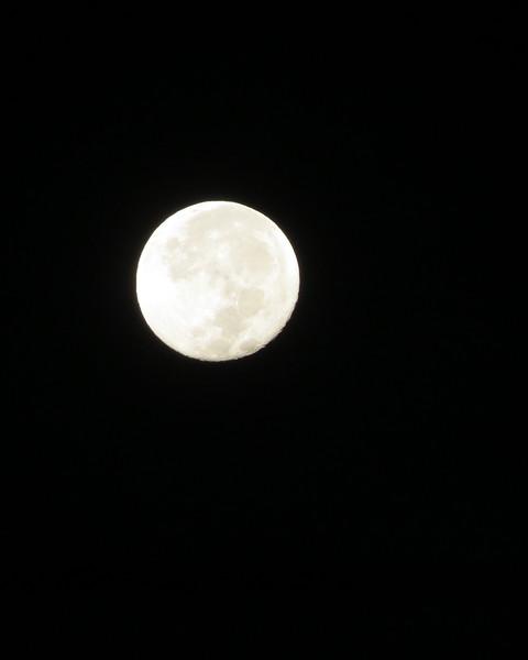 full moon closeup Octobr 3 2020.JPG