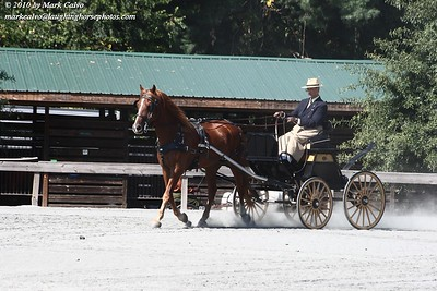 9-24-2010 Carolina Carriage Club 14th Annual Pleasure Driving And Dressage Show Day 1