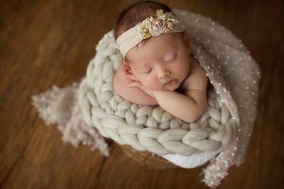 Madison B Newborn