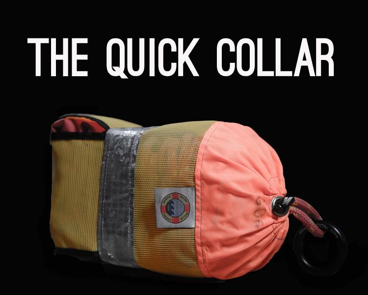 quick collar header.jpg