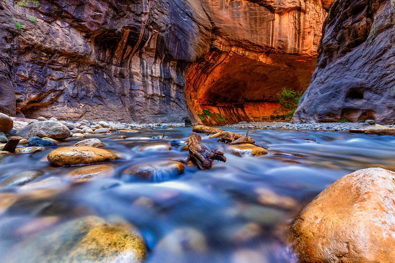 Zion National Park Gallery