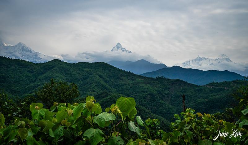 Annapurna__DSC2978-Juno Kim.jpg