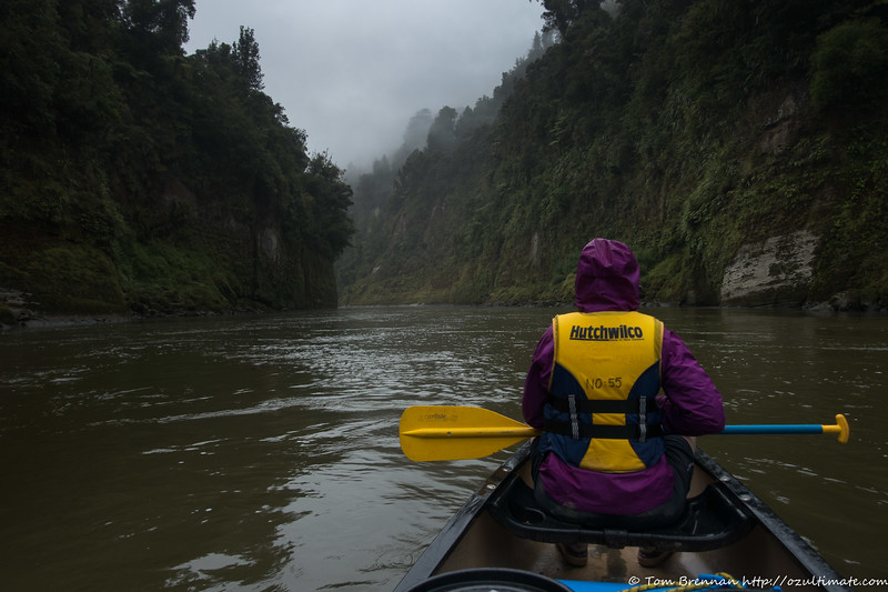 Drizzly paddle the next morning