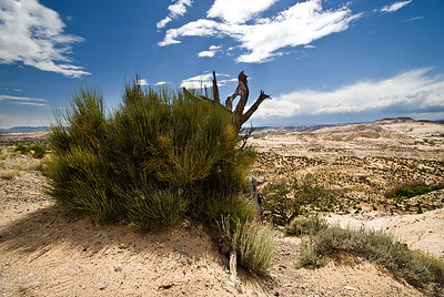 Escalante National Monument