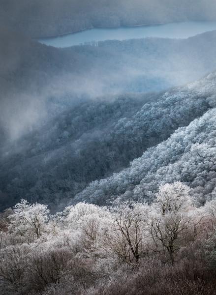 Hoarfrost in the Blue Ridge