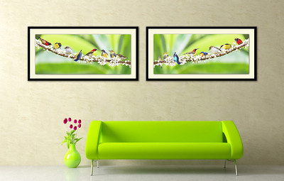 Philippine Birds as Art - Groupings