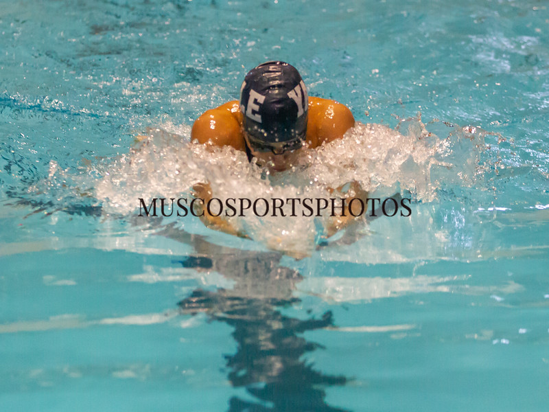 Swimming-diving vs Seton Hall_273.jpg