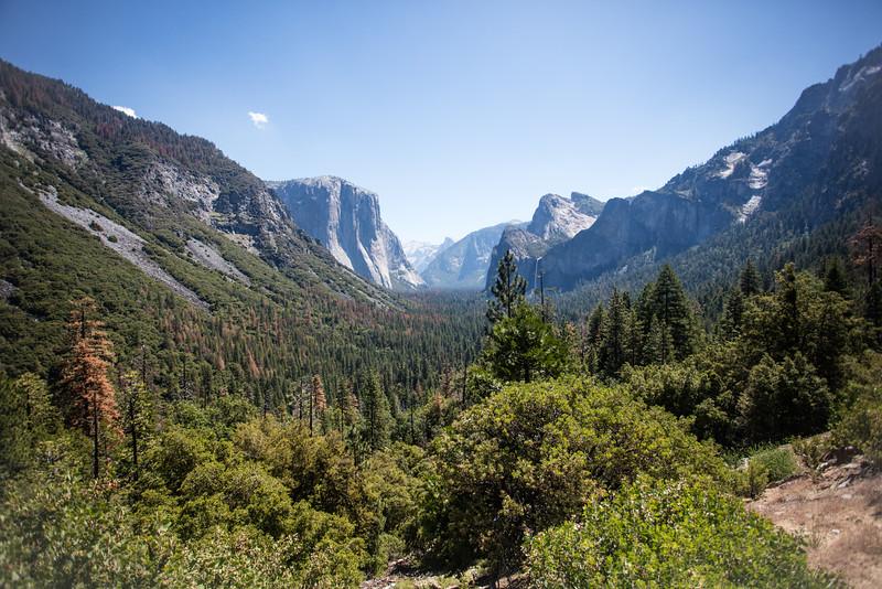 Yosemite_2016_Park-21.jpg