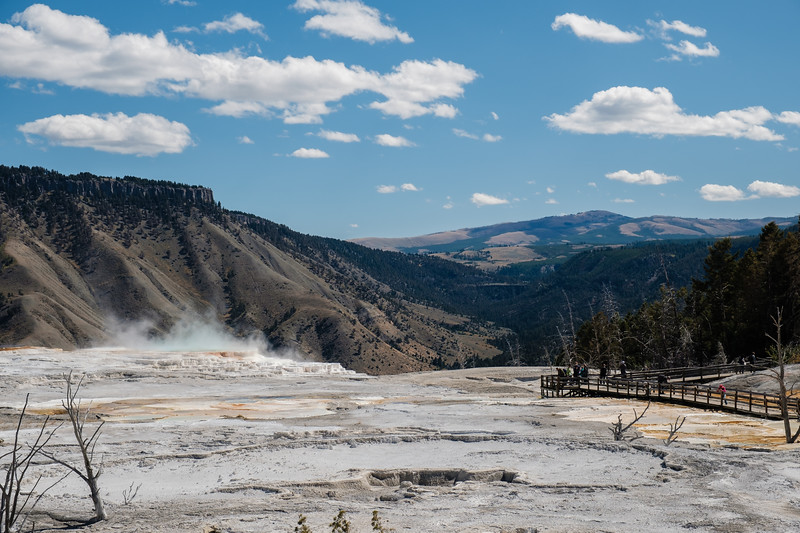 Mammoth-Hot-Springs-Yellowstone-Mroczek-2824.jpg