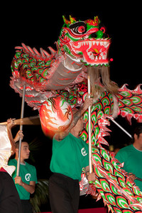 Year of the Dragon - January 30, 2012