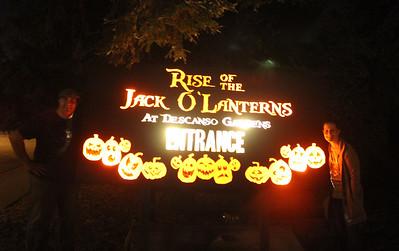 2014 October 19 Rise of the Jack-o-Lanterns