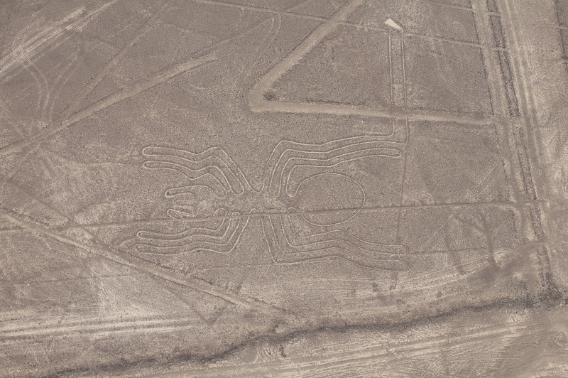 The Spider – Nazca Lines