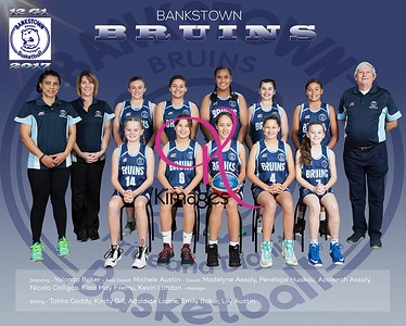 Bankstown Team Photos 2017