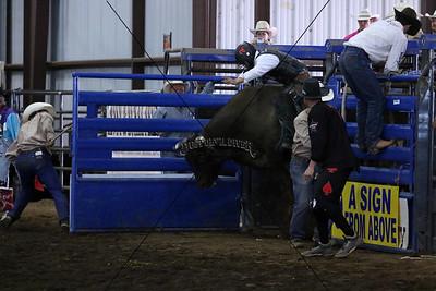 PRCA Bull Riding Sunday