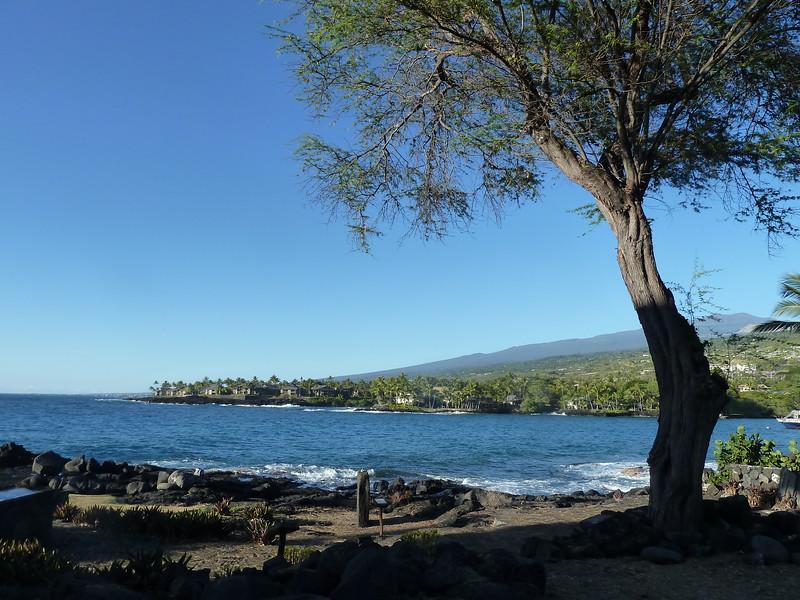 Hawaii 2017 135.JPG