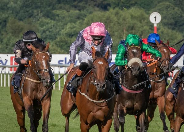 Race 1 - Phryne