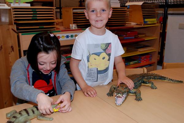 groep 3: krokodillen en wilde beesten