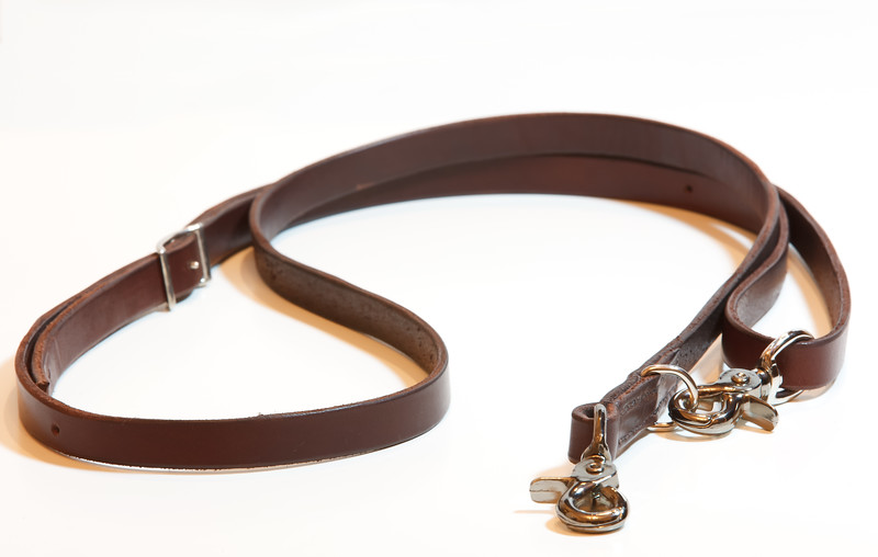 Custom Designed Leash