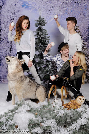 CHRISTMAS SNOW WITH WOLF