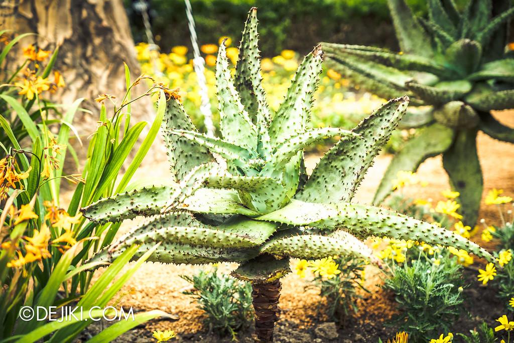 Gardens by the Bay - Tribal Tempo / Spiky aloe