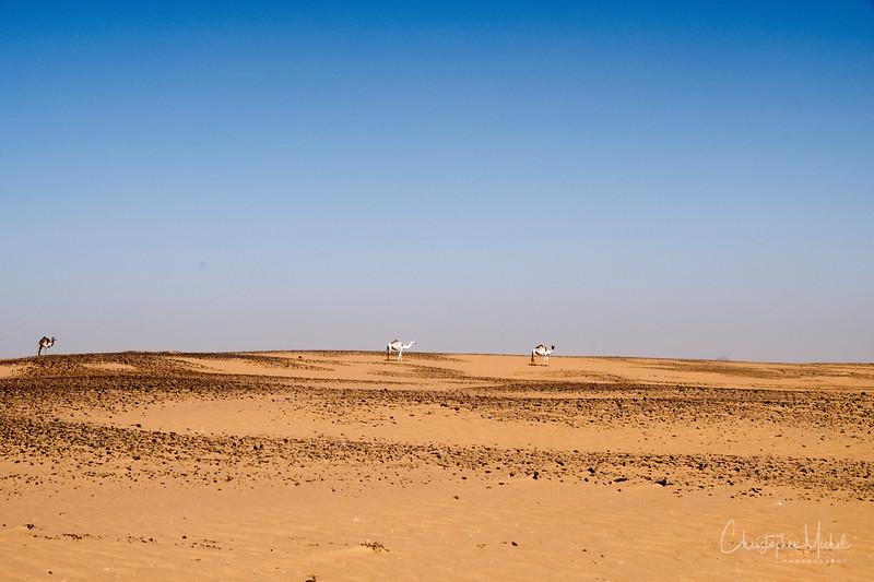 2-2-17228612Meroe-Bayuda Desert-Karima.jpg