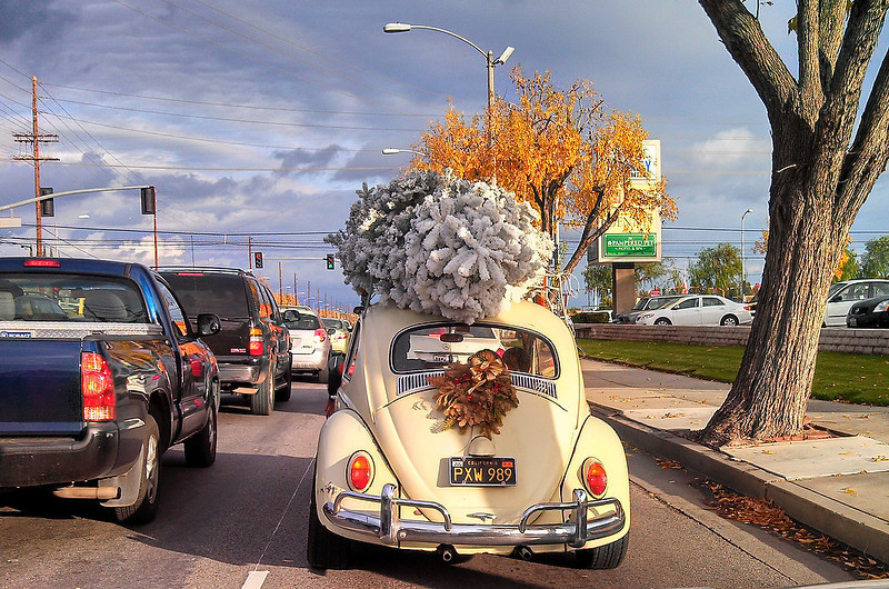 . A family transports their Christmas tree on the top of their vintage Volkswagen Beetle in a residential neighborhood of Woodland Hills, California on Christmas Eve, December 24, 2012.  JOE KLAMAR/AFP/Getty Images