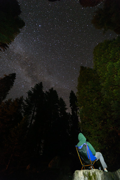 Sequoia_0816.jpg