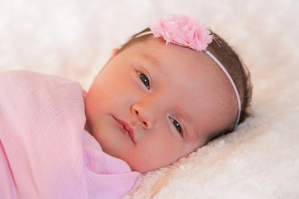 Olivia Roberts Newborn