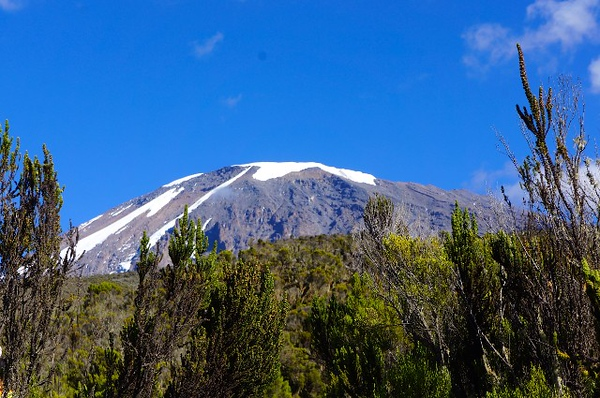1494231897Mt-Kilimanjaro-5.jpg