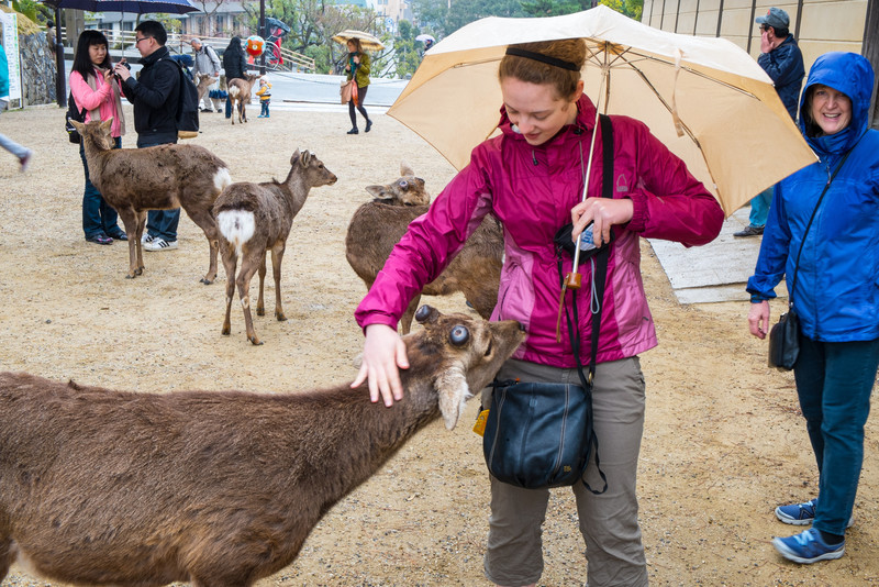 Nara Day 5 (39 of 374).jpg